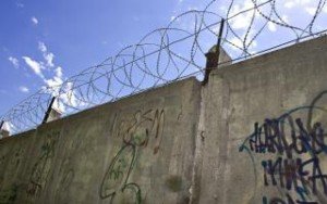 barbed-wire-wall-military_19-121526-300x188