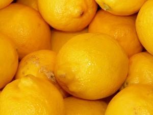 lemons-5762_640-300x225