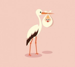 stork-carrying-cute-baby-vector_23-2147495050-300x267