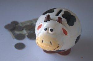 piggy-bank-390528_1280-300x199